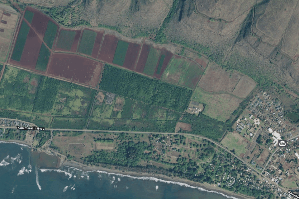 Lawmakers Question Whether State Should Buy Kauai Farmland