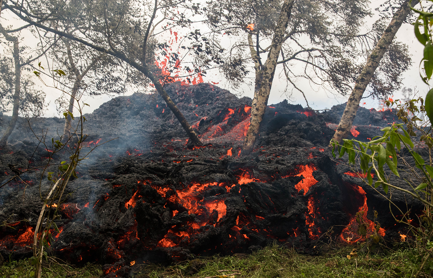 <p>Brush and trees begin to burn as the lava flows engulf an area on Saturday near Lower Puna on the Big Island. New fissures opened up on Saturday and Sunday a few miles from the communities, where at least 26 houses have been destroyed and 2,000 residents have received evacuation orders.</p>
