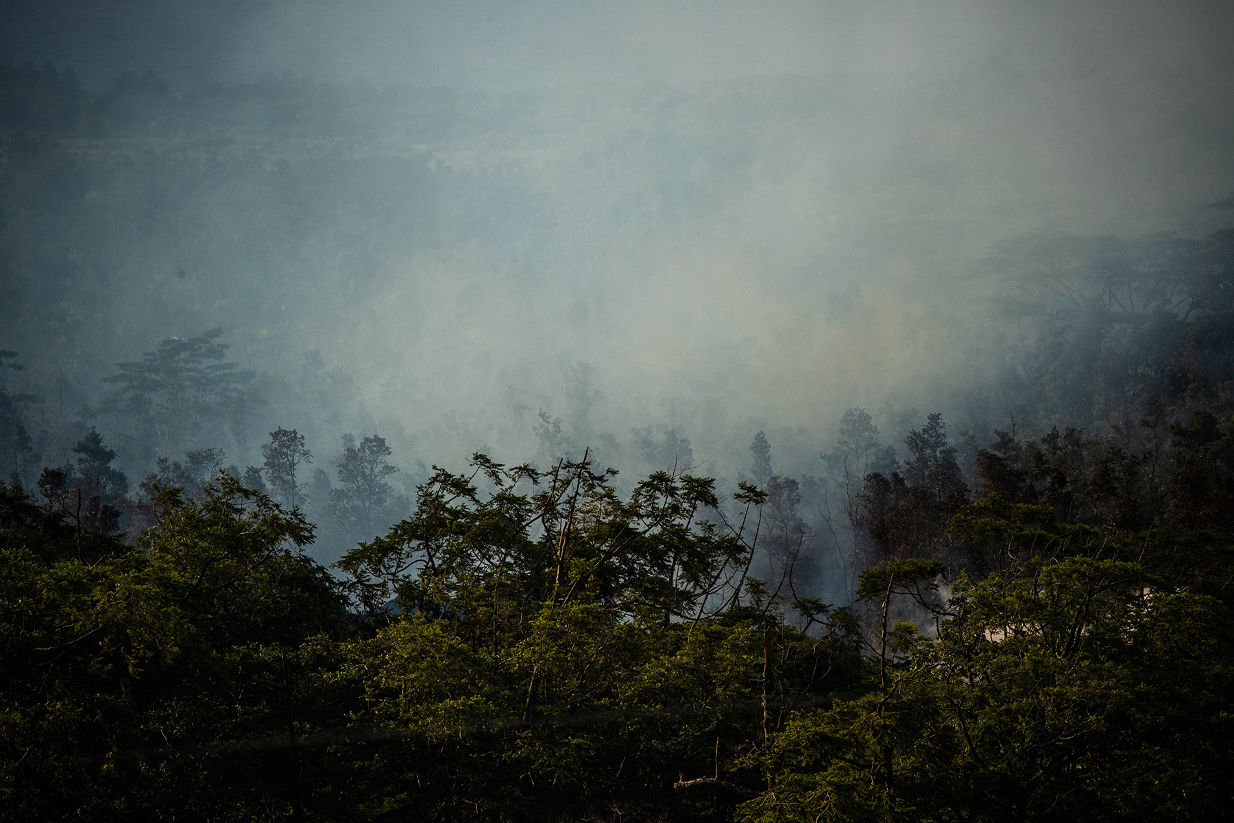 <p>Steam rises over one of the newest fissures releasing lava and gases as volcanic activity continues on the Big Island.</p>