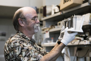 UH Scientist Reports Promising Development In Alzheimer's Research