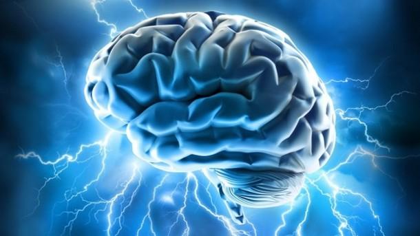 BE!  Brain Enrichment Program picture