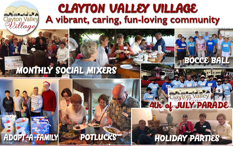 Our  Village Voice - June 2018 newsletter