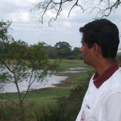 Image of Chandana Rohana Withanachchi