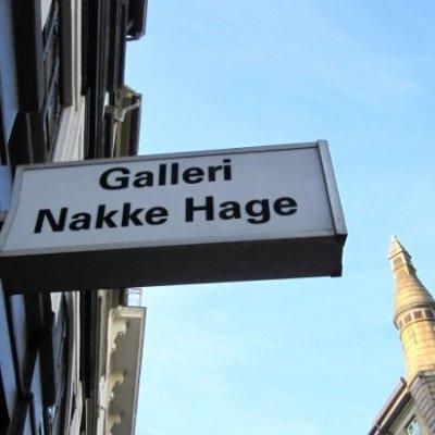 galleri nakke