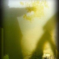 Image of Lisa Waup