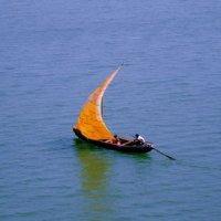 Image of Vinod Kaky