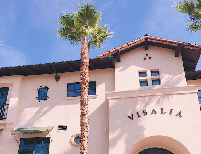Visalia train station and palm trees