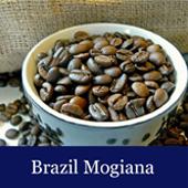Voyage Coffee Roasters Brazil Mogiana