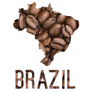 Argyle Coffee Roasters Brazil Primavera Reserve
