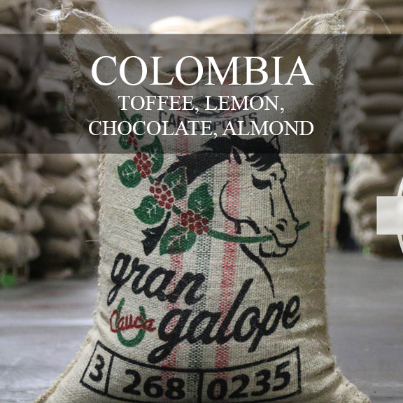 Contrast Coffee Colombia Excelso Gran Galope