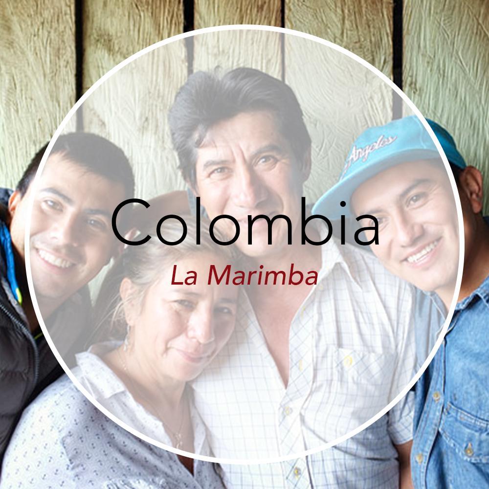 Copper Door Coffee Roasters Colombia La Marimba