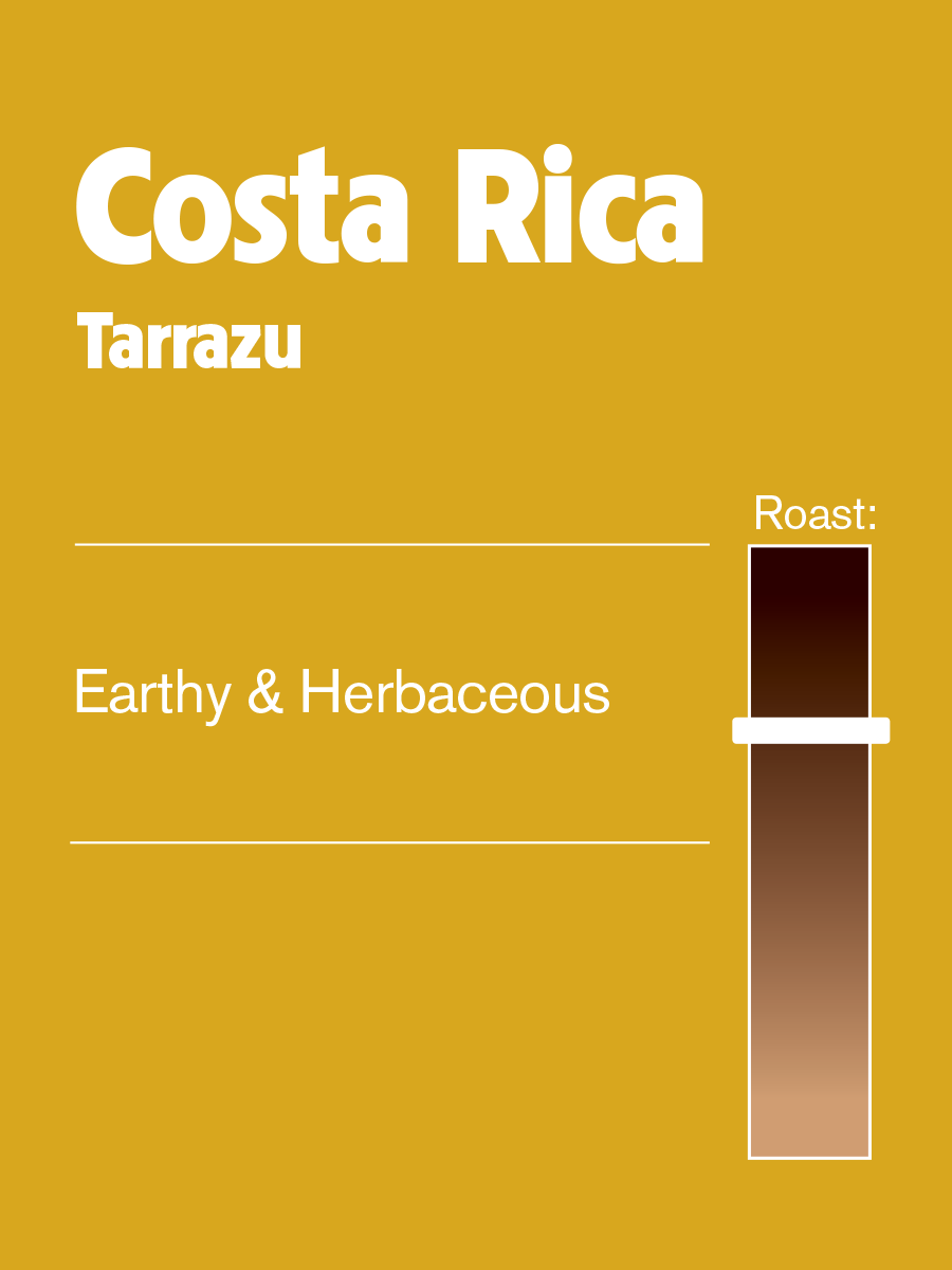 Philly Fair Trade Costa Rica Tarrazu