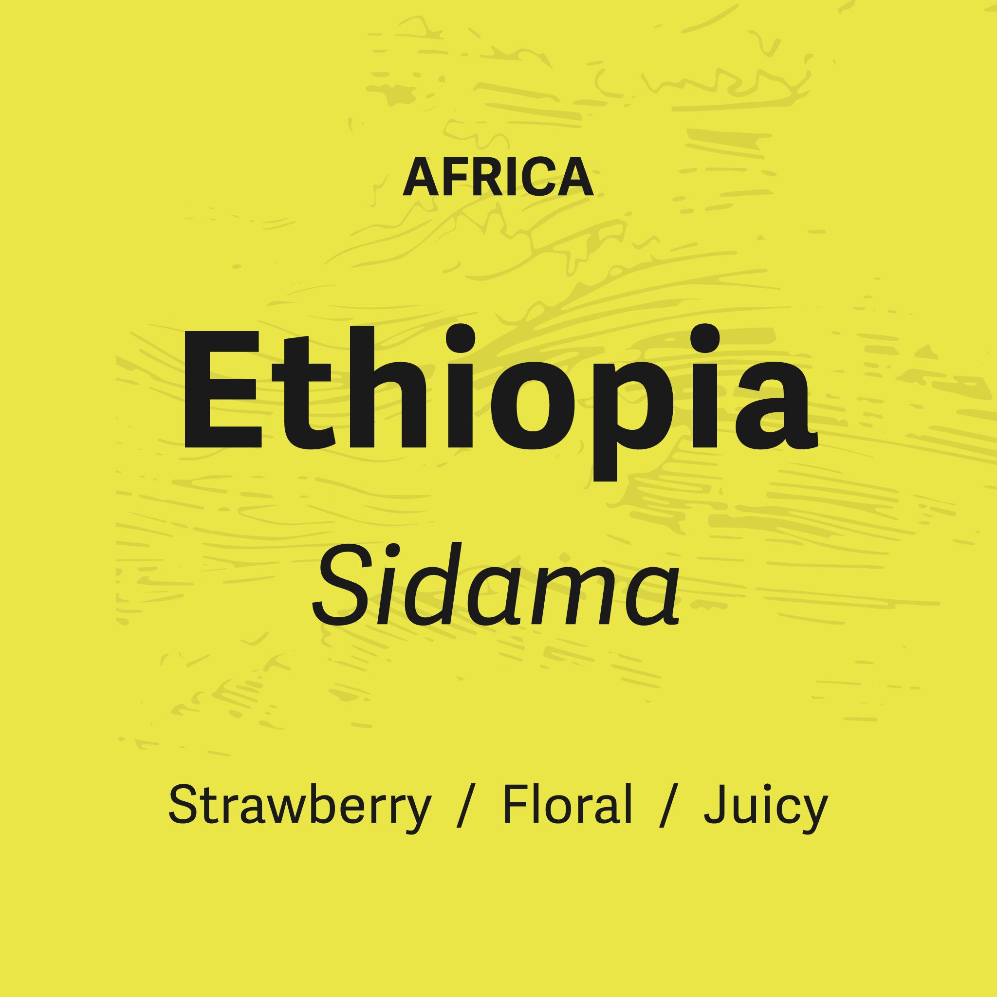 Boil Line Coffee Co Ethiopia Sidama