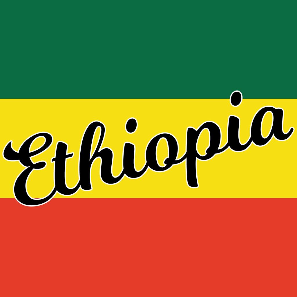 Bidaar Roasting Ethiopia Sidamo Werka