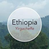 Copper Door Coffee Roasters Ethiopia Yirgacheffe