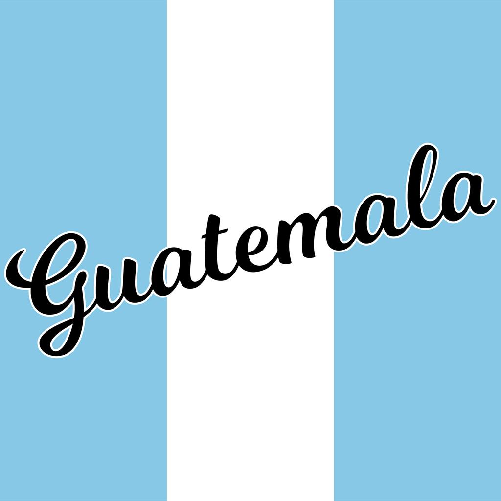 Bidaar Roasting Finca Chichen Guatemala