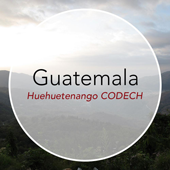 Copper Door Coffee Roasters Guatemala Huehuetenango