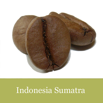 Voyage Coffee Roasters Indonesia Sumatra