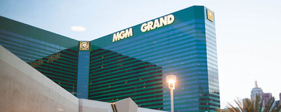 MGM Grand Wheelchairs  - Cloud of Goods