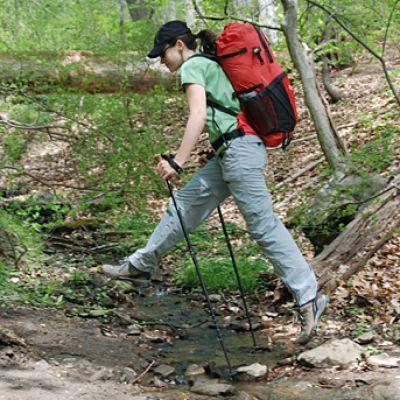 Hiking/ trekking poles