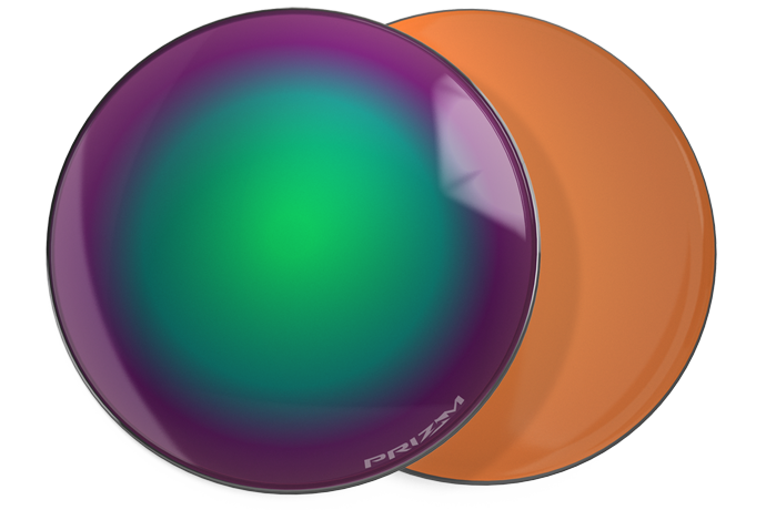 8000a571f2a Prizm™ Shallow Water Polarized Puck Image
