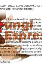 Ideja_-_prezentacija_Nermana_Šimšić.jpg