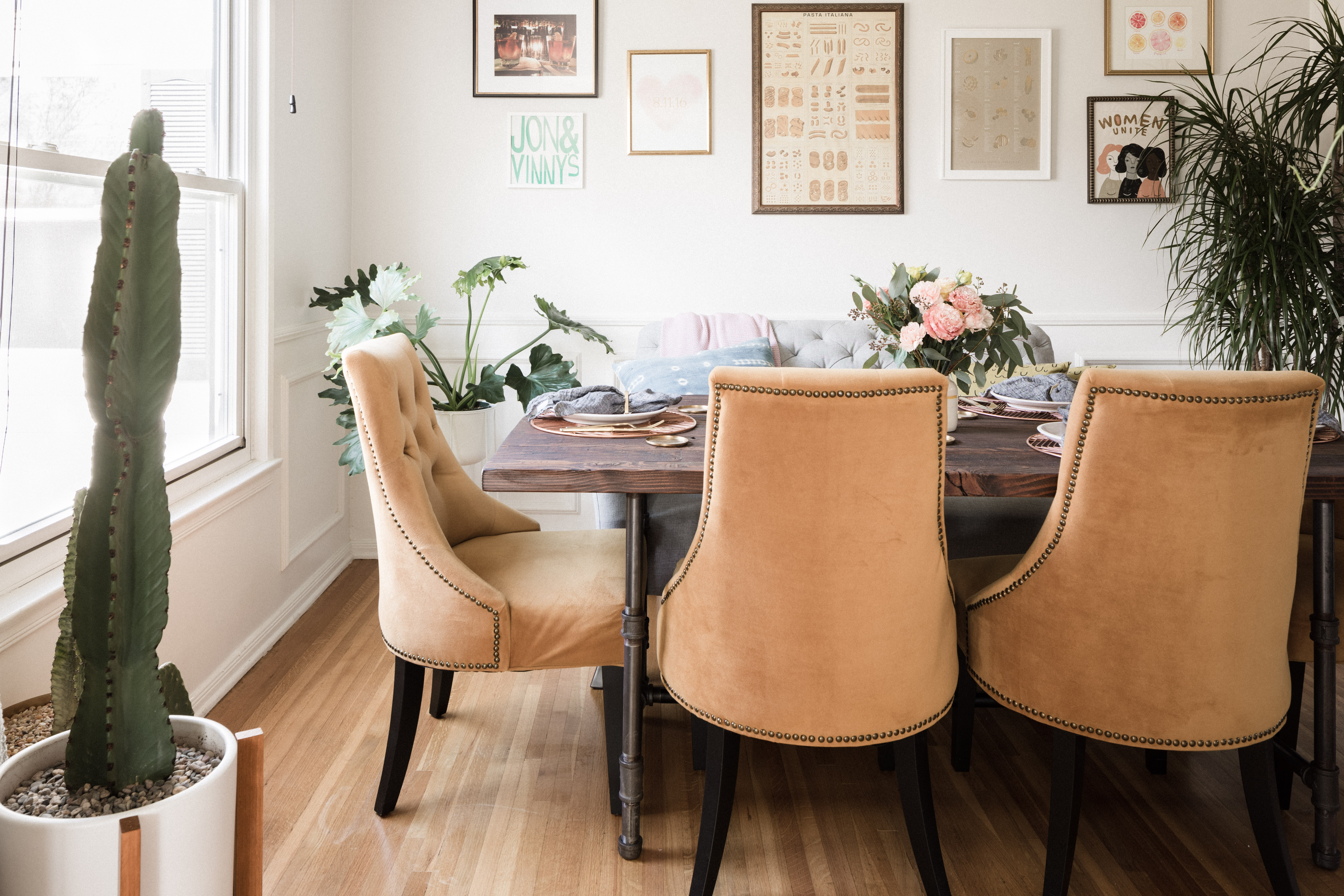 Dining Room Indoor Plants Ideas For Sunny Or Shady Rooms Hunker