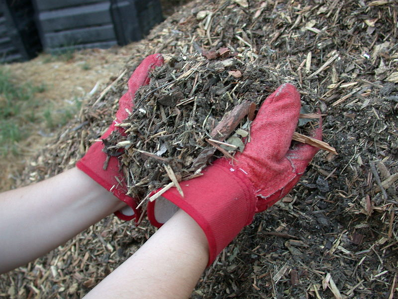 What Is Mulch? How Do I Use It? | Hunker