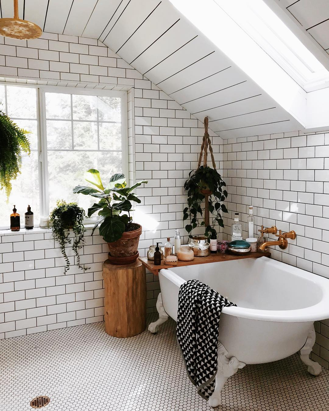 Yes, You Should Turn Your Bathroom Into a Lush, Plant-Filled Retreat — Here's How | Hunker