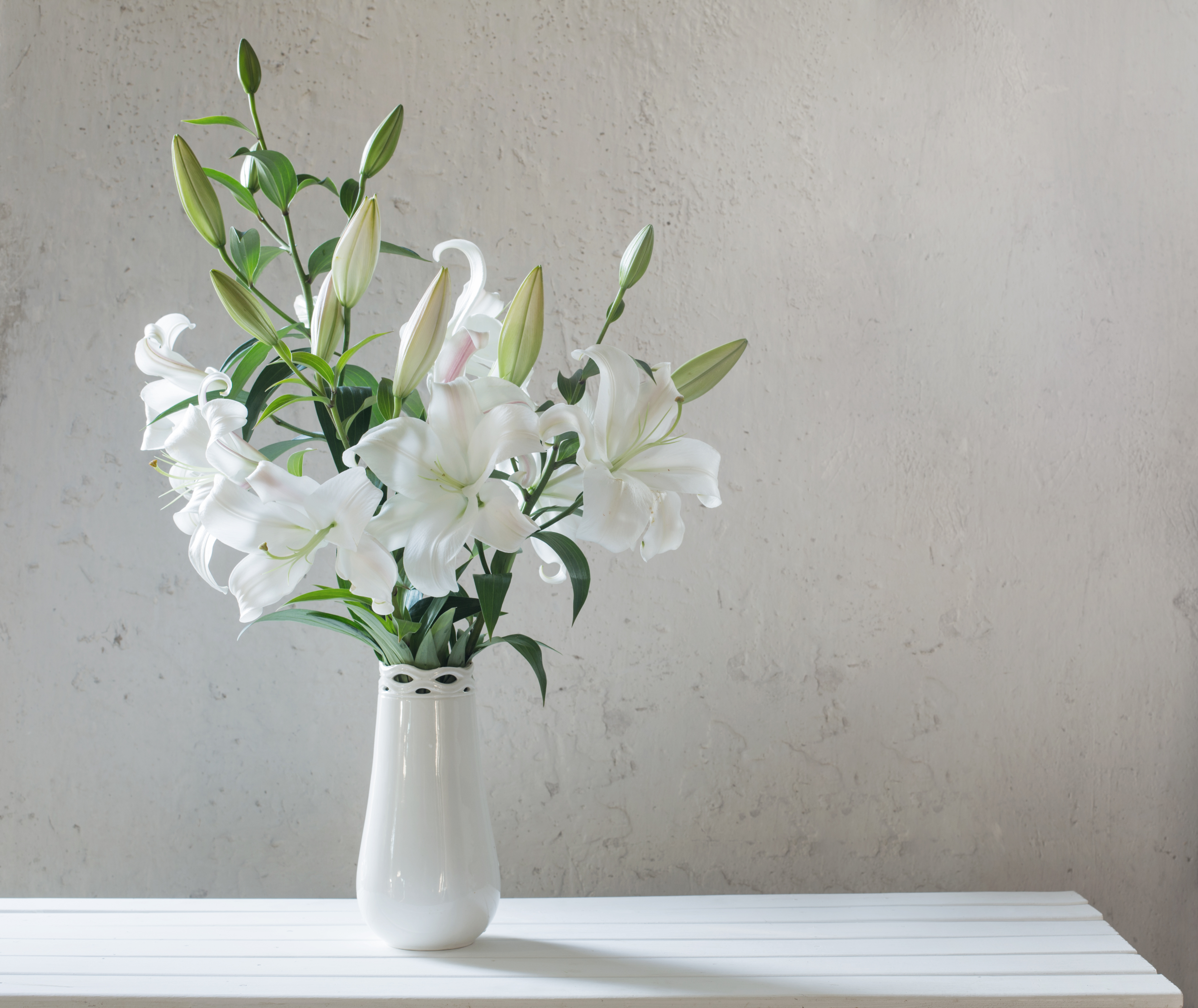 How to Care for Lilies in a Vase & How to Care for Lilies in a Vase | Home Guides | SF Gate