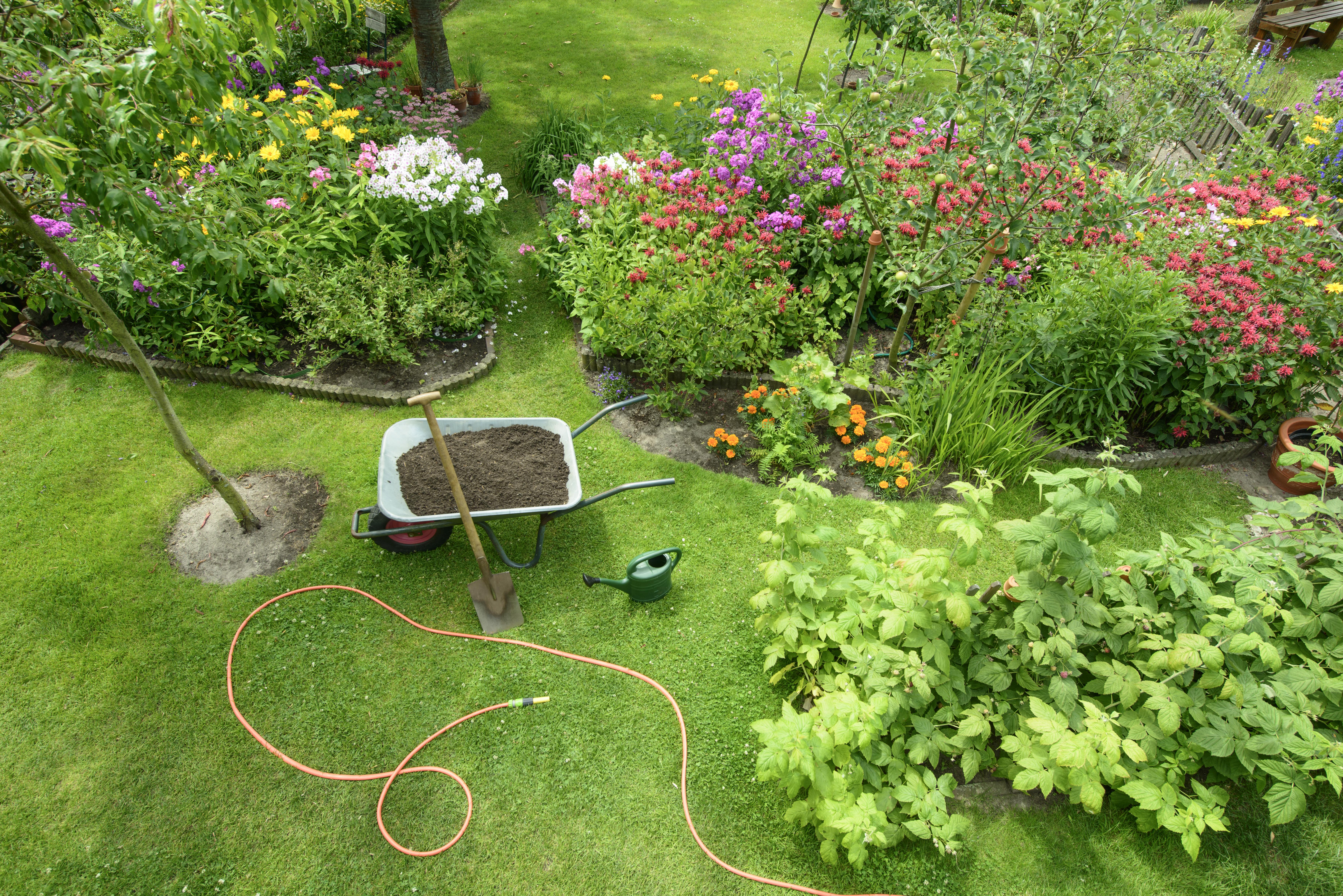Inorganic Fertilizer Vs  Organic Fertilizer | Home Guides | SF Gate