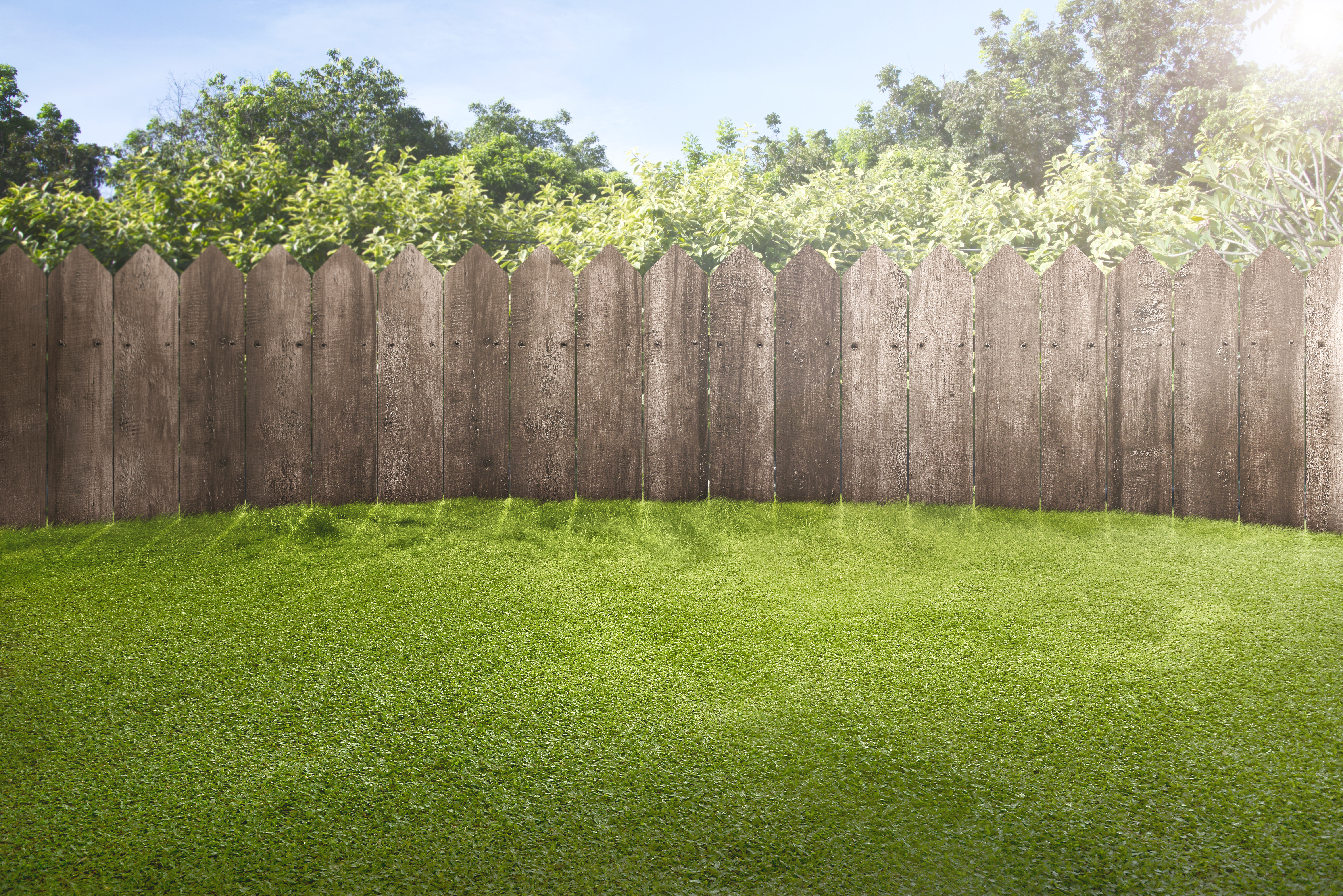 How To Start A New Garden Where Grass Is Growing Home Guides Sf Gate