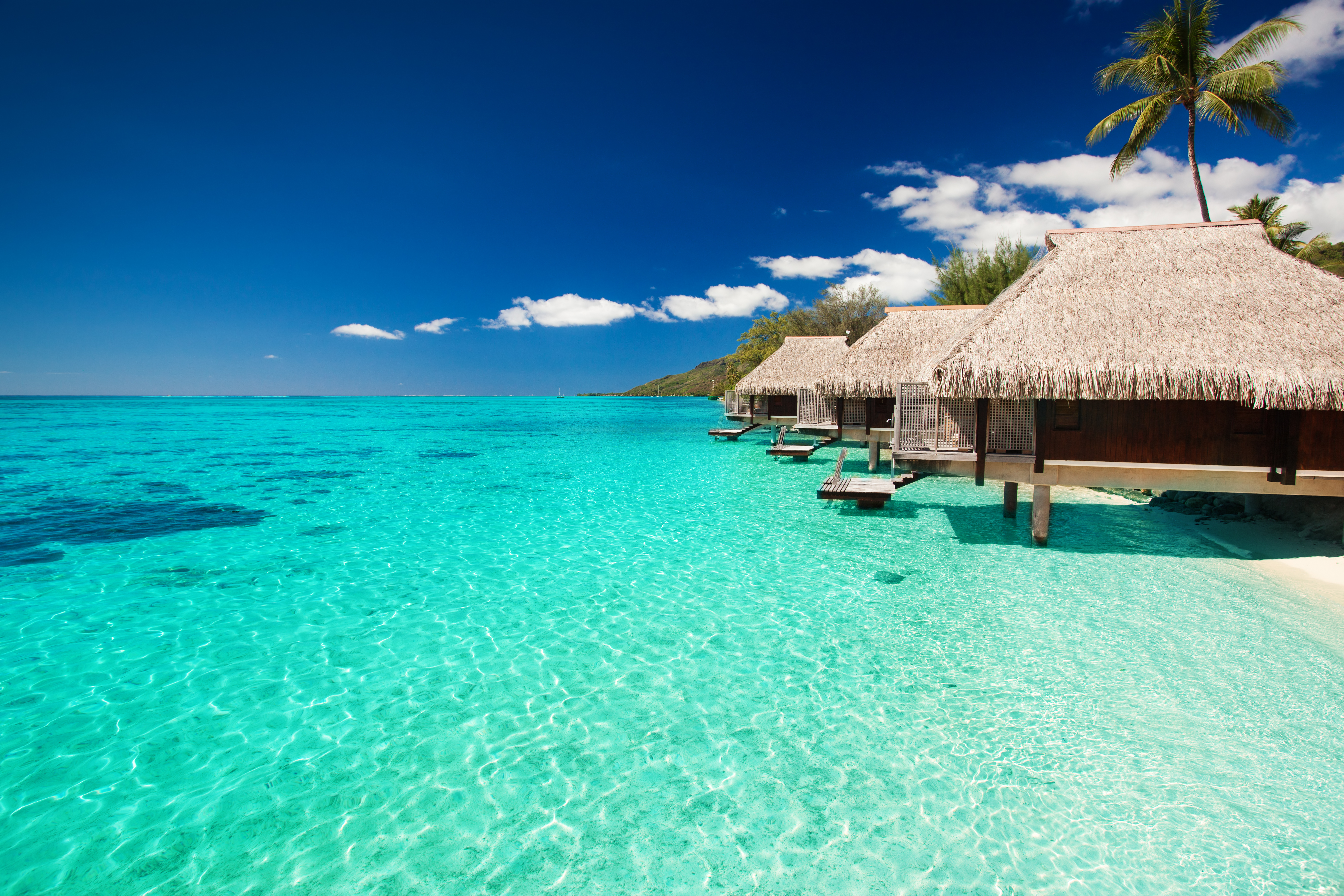 How Much Does A Trip To Bora Bora Cost 10best