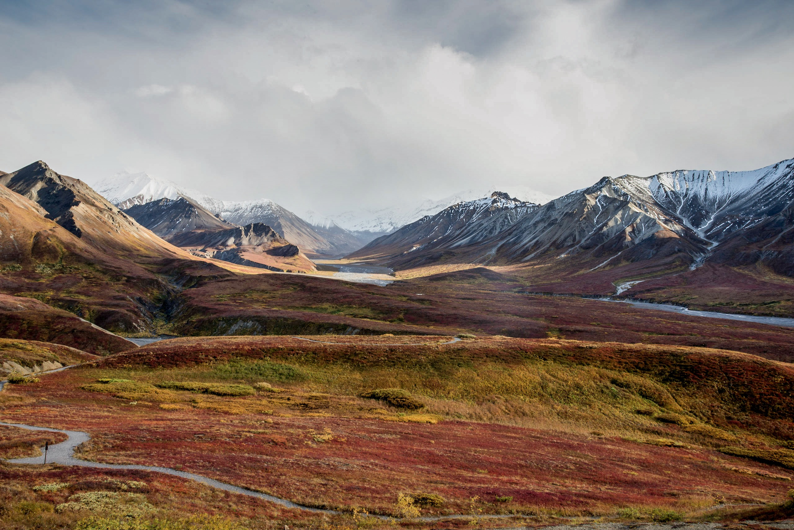 What Do I Need to Travel to the Tundra Biome? | USA Today