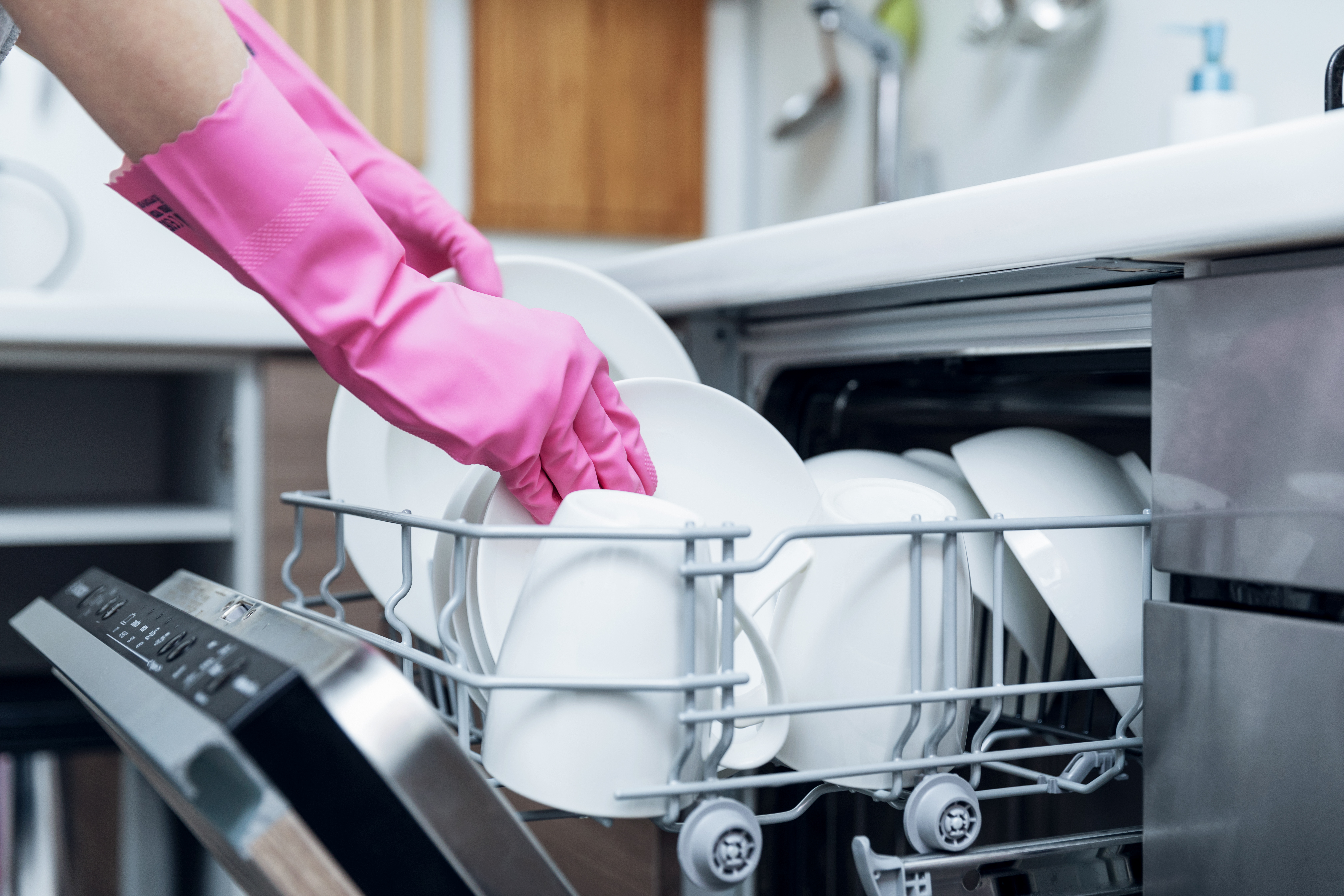 How To Replace The Filters On A Maytag Dishwasher Model MDB8750AWB | Home  Guides | SF Gate