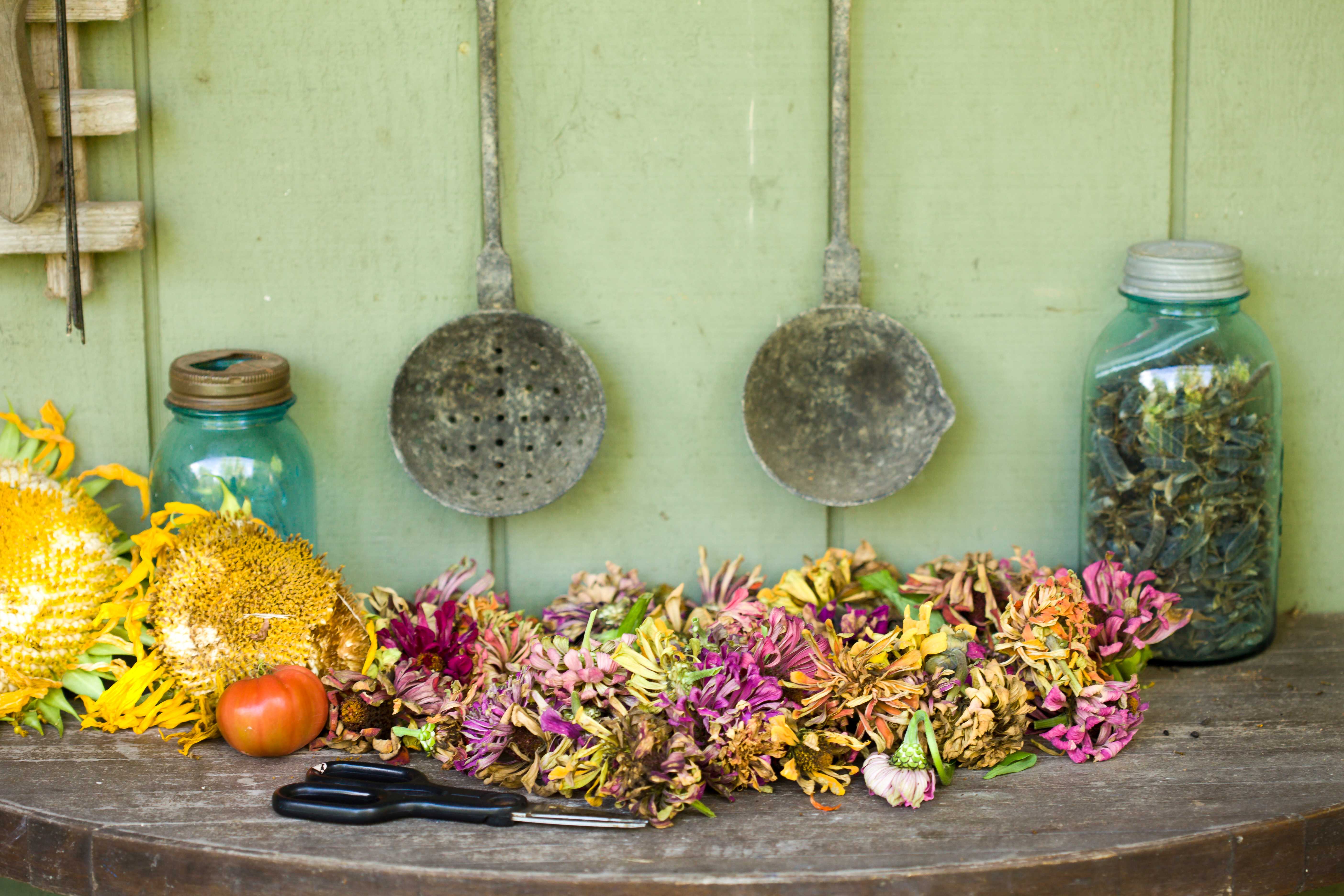 What Is The Best Way To Preserve Flowers Why Home Guides Sf Gate