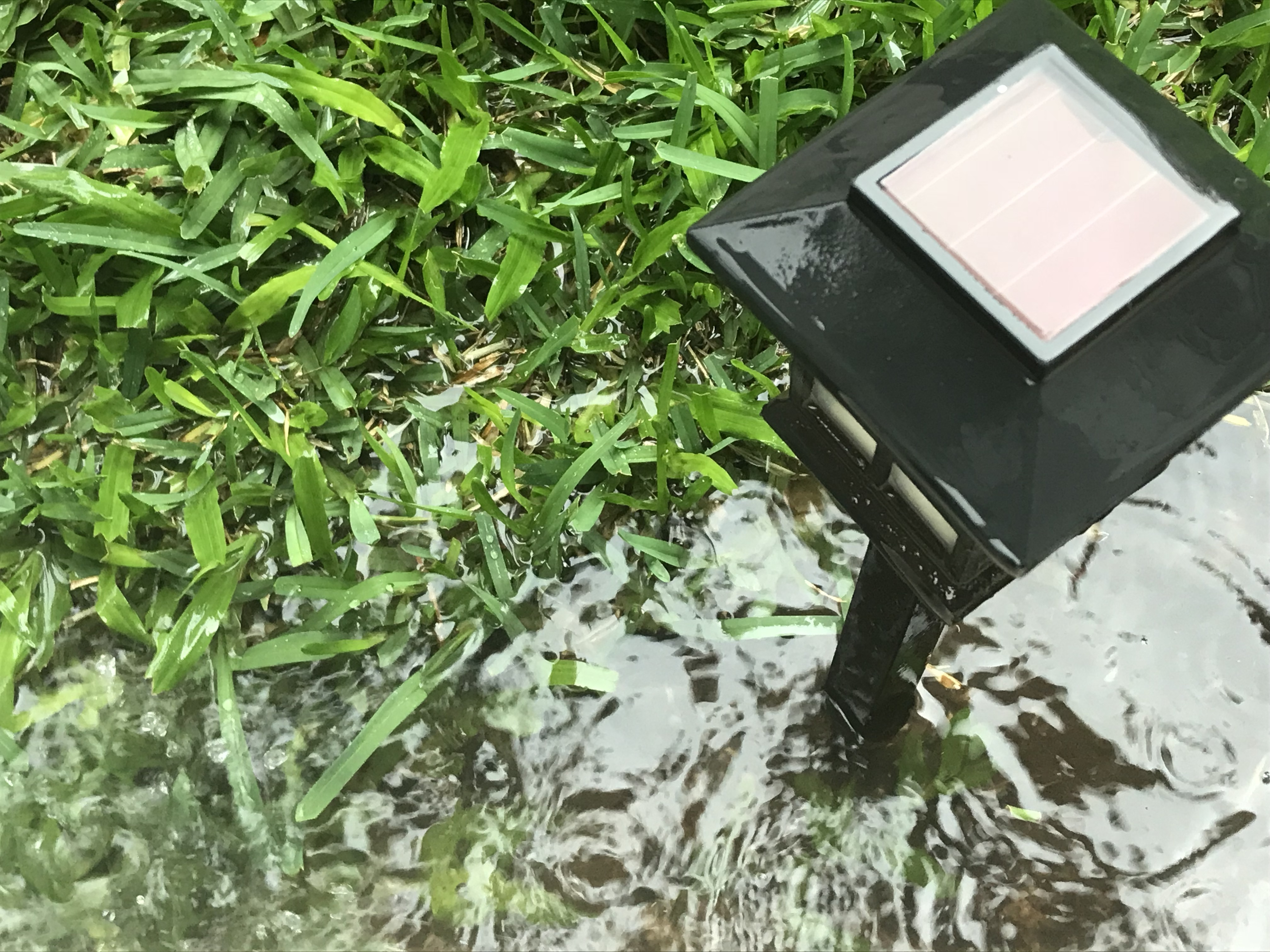 Fixing a Yard That Is Ponding | Home Guides | SF Gate