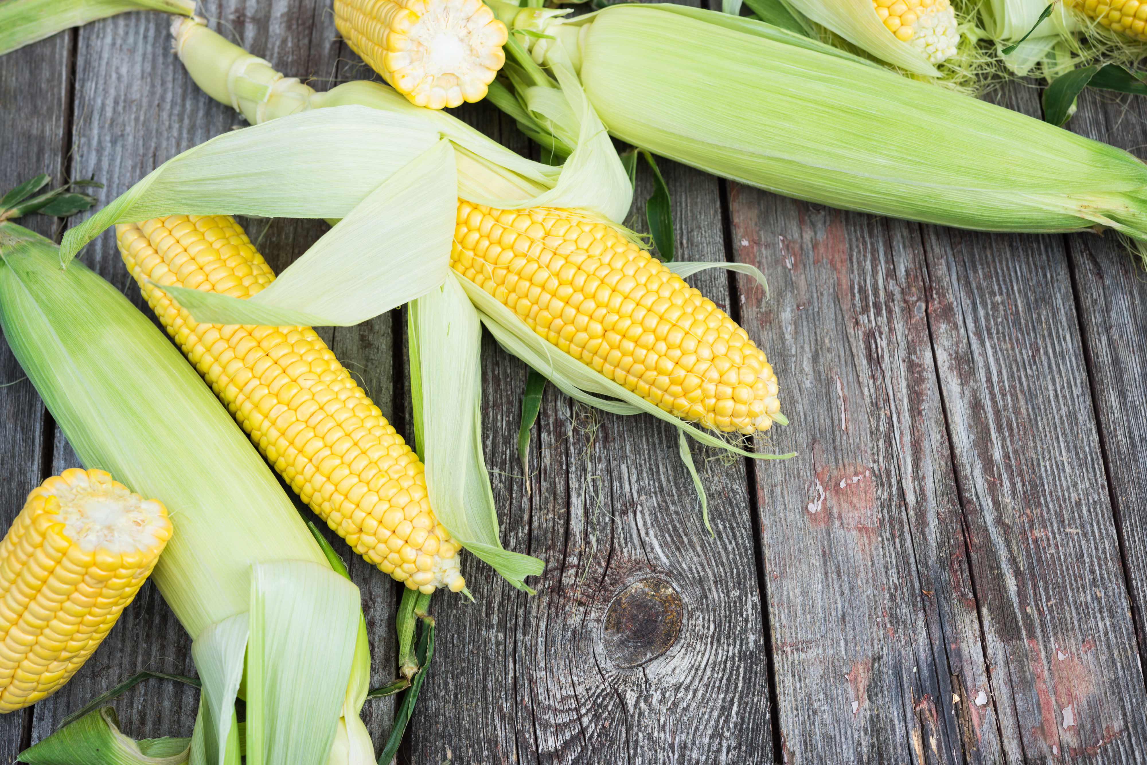 The Importance Of Maize In Aztec Diet