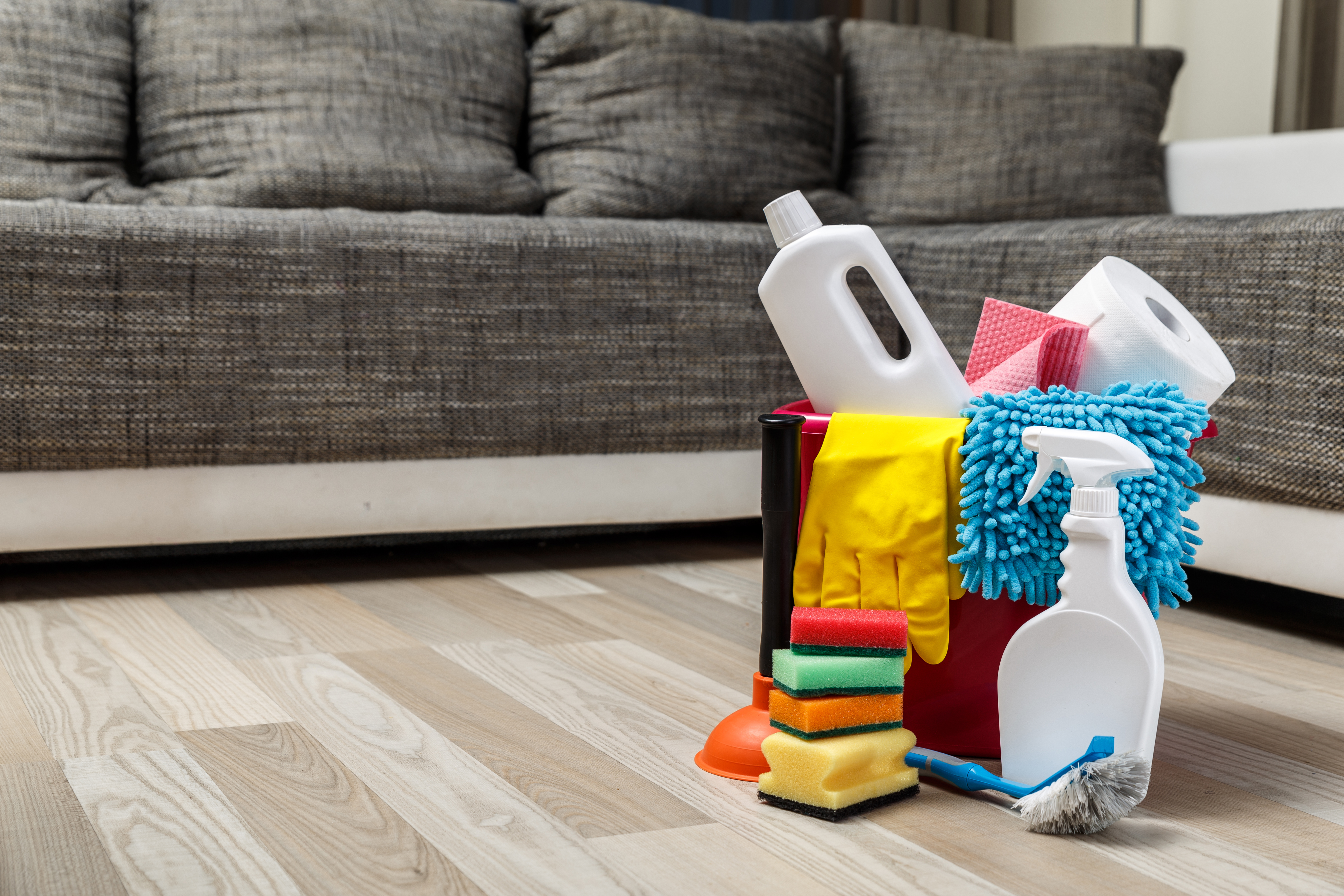 How To Clean Urine Out Of Couch Cushions | Hunker