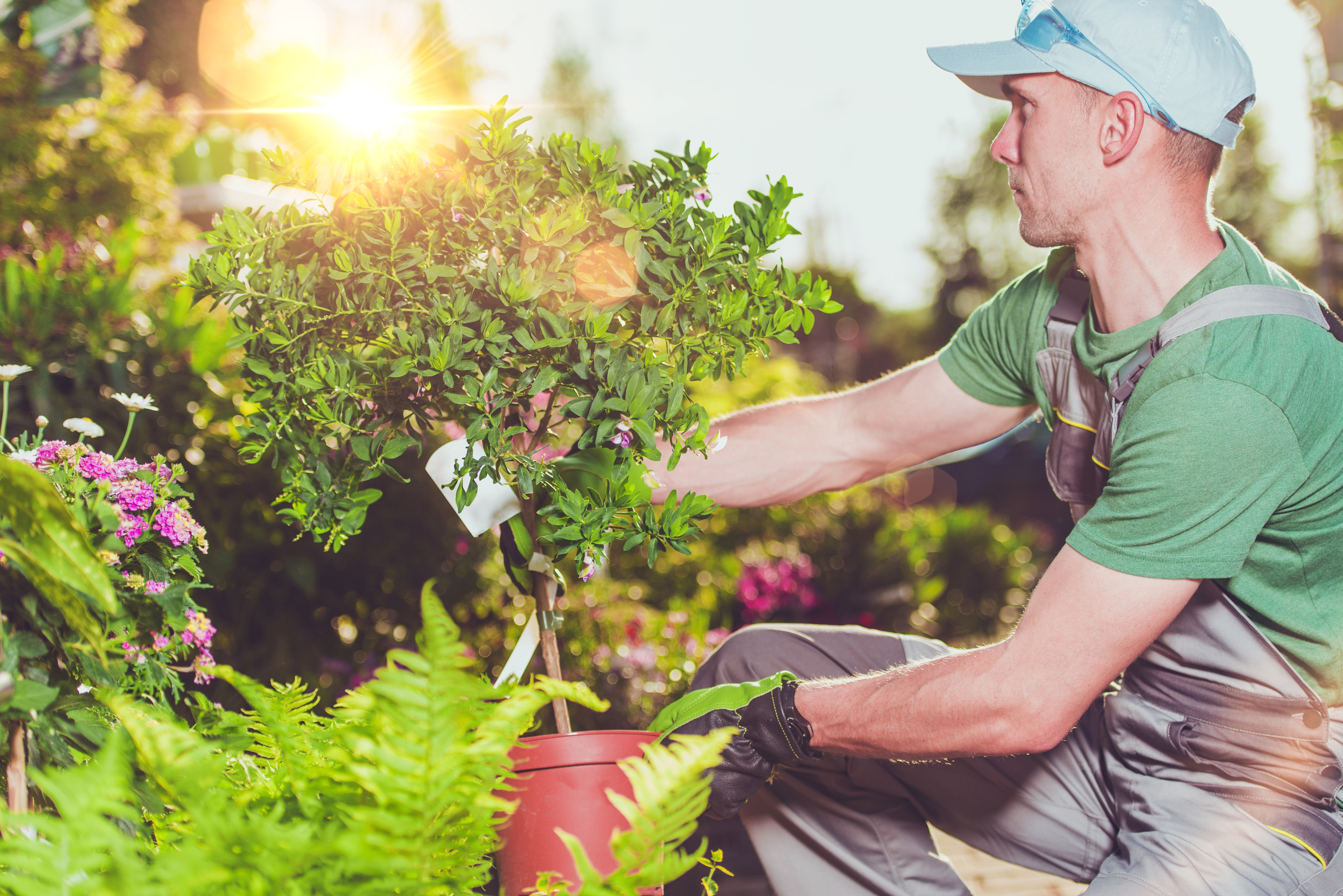 Types Of Jobs Available In Landscaping