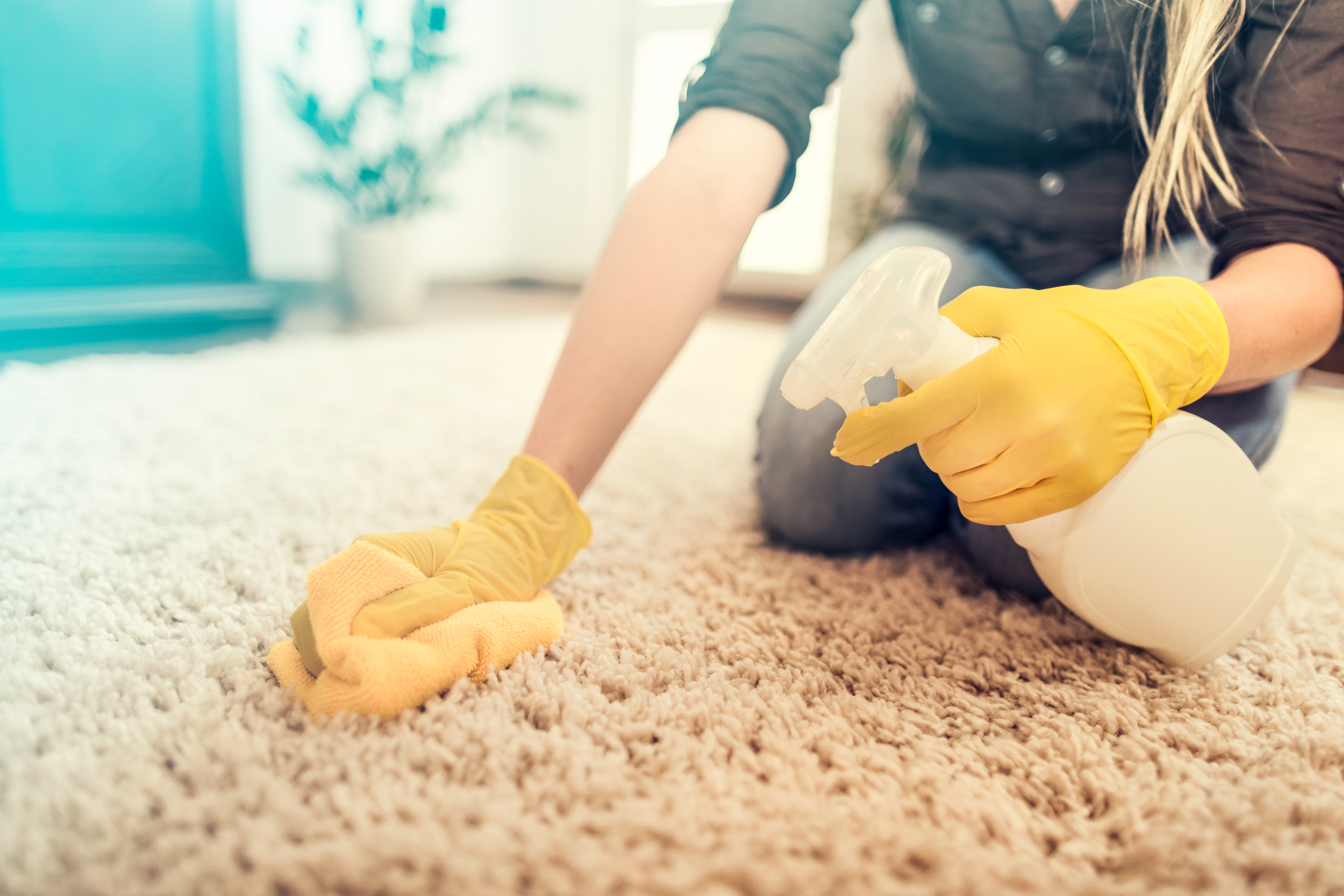How to Remove Vomit Smell From Carpet | Hunker