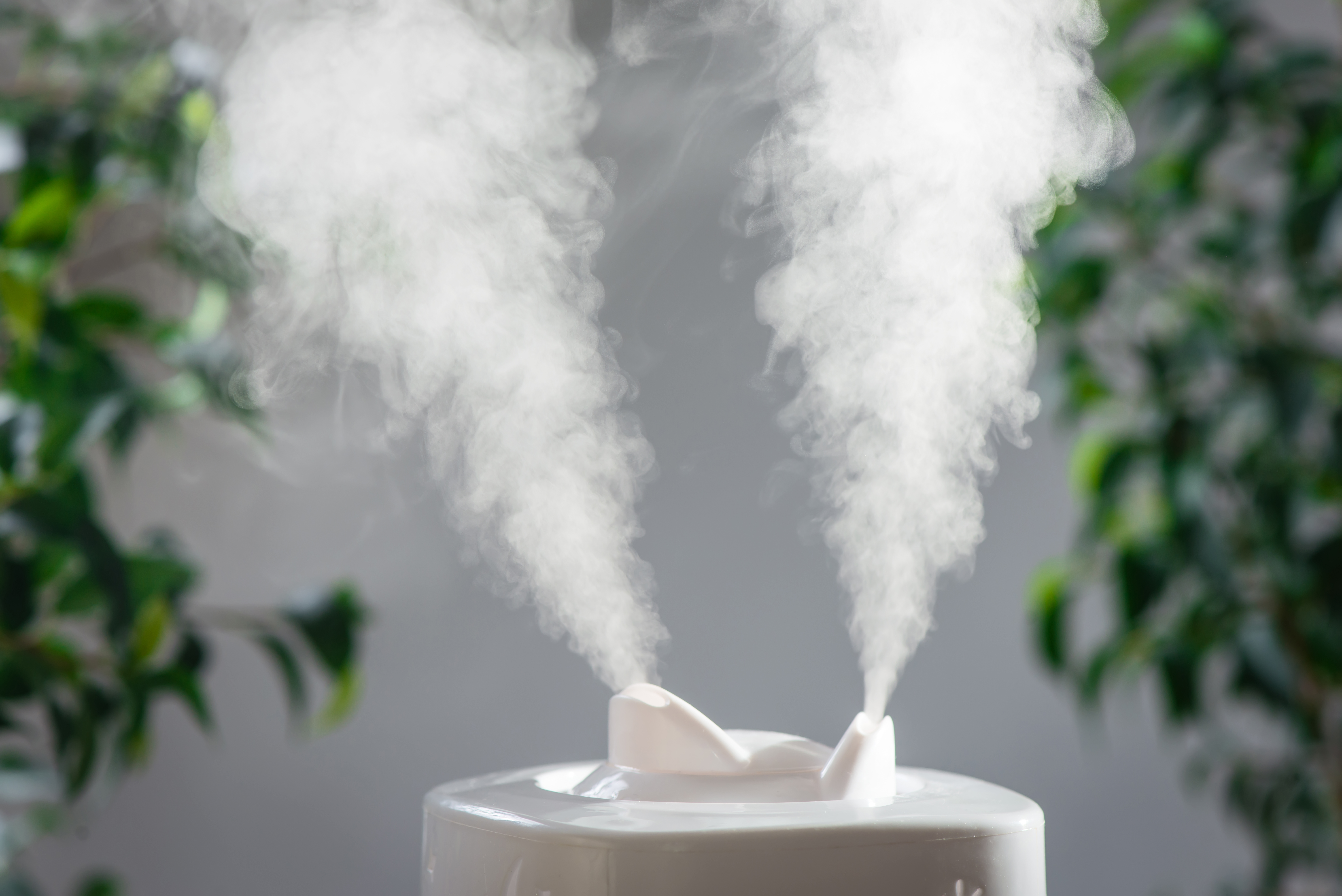 How to a Clean Vicks Cool Mist Humidifier   Home Guides   SF Gate