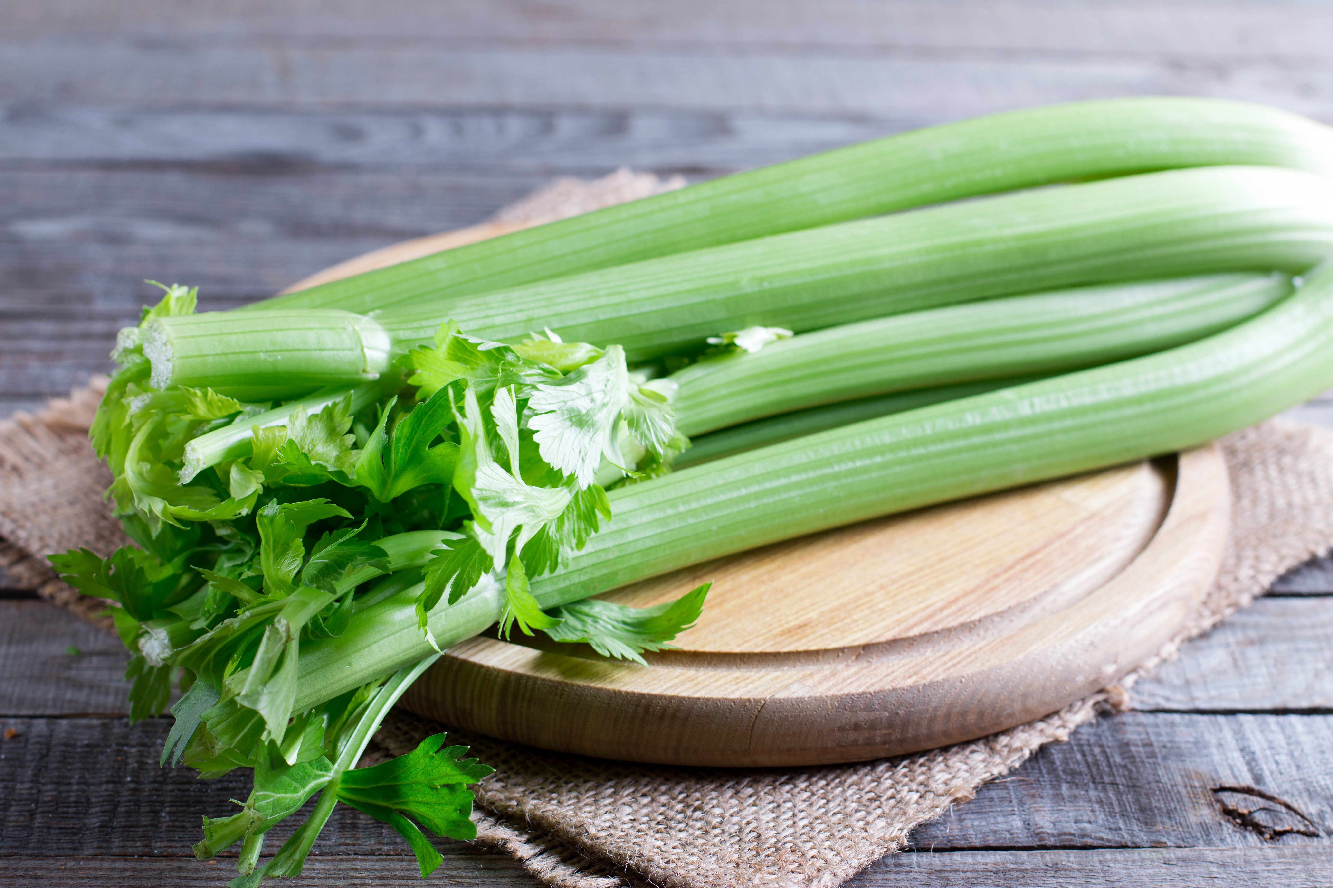 Is Celery Toxic? | Healthy Eating | SF Gate
