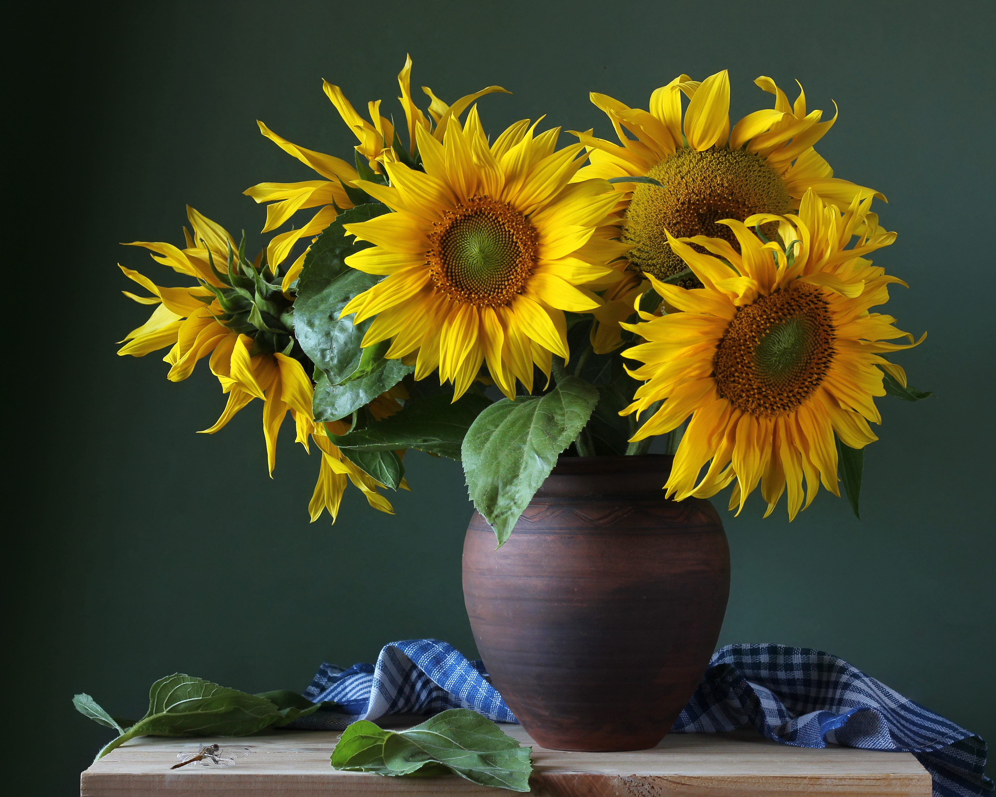 How to Cut Sunflowers to Put in a Vase | Home Guides | SF Gate Pre Flower Vase Craft on flower ball crafts, flower seed crafts, beaded flower crafts, flower garden crafts, flower pen crafts, tiles crafts, flower boxes crafts, flower jar crafts, flower vases for weddings, flower christmas ornament crafts, flower house crafts, flower valentine crafts, ice cream bowl crafts, silk flower crafts, small flowers for crafts, flower bed crafts, dried flower crafts, artificial flower crafts, box crafts, flower mosaic crafts,