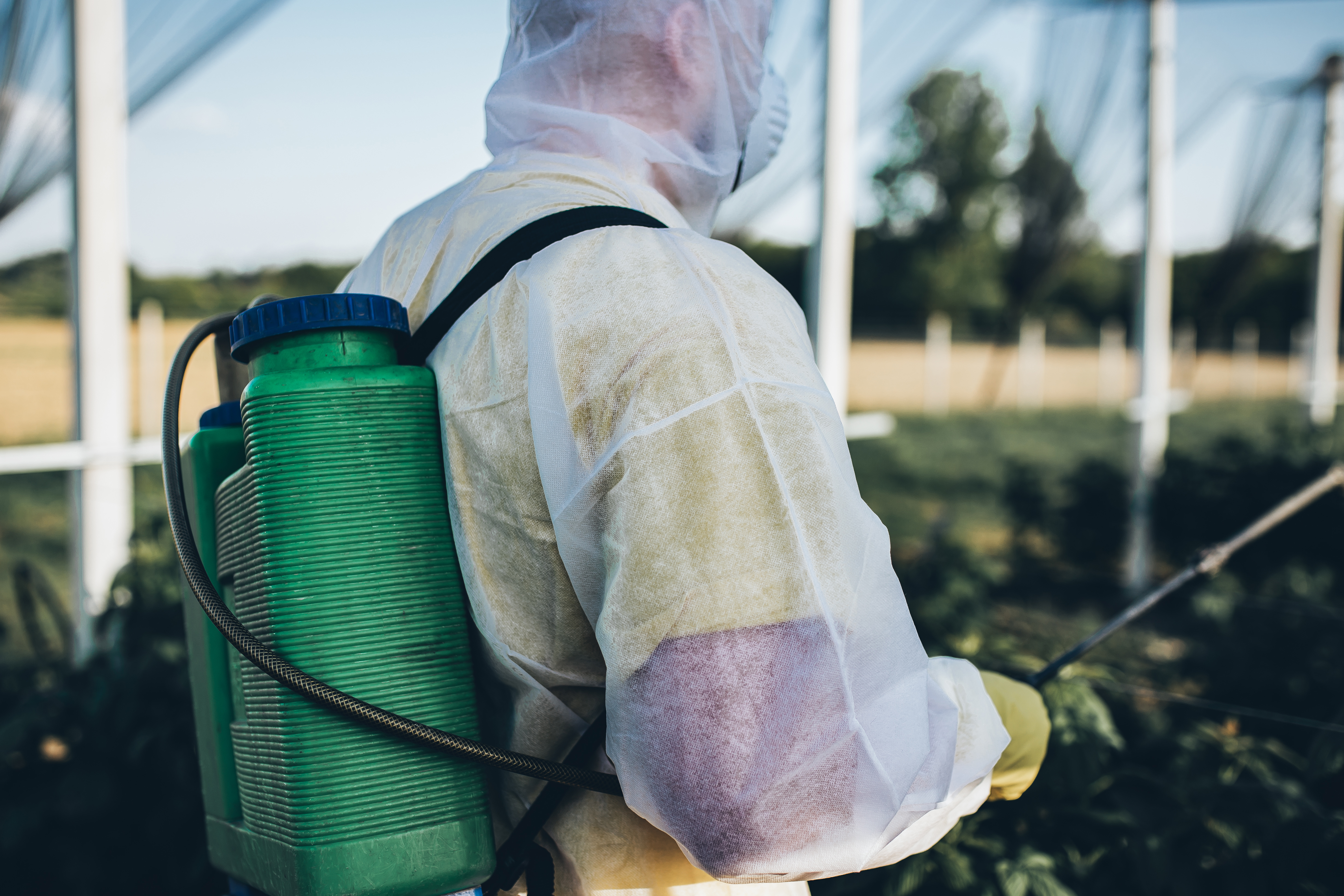 Can I Use Roundup on Wet Weeds? | Home Guides | SF Gate