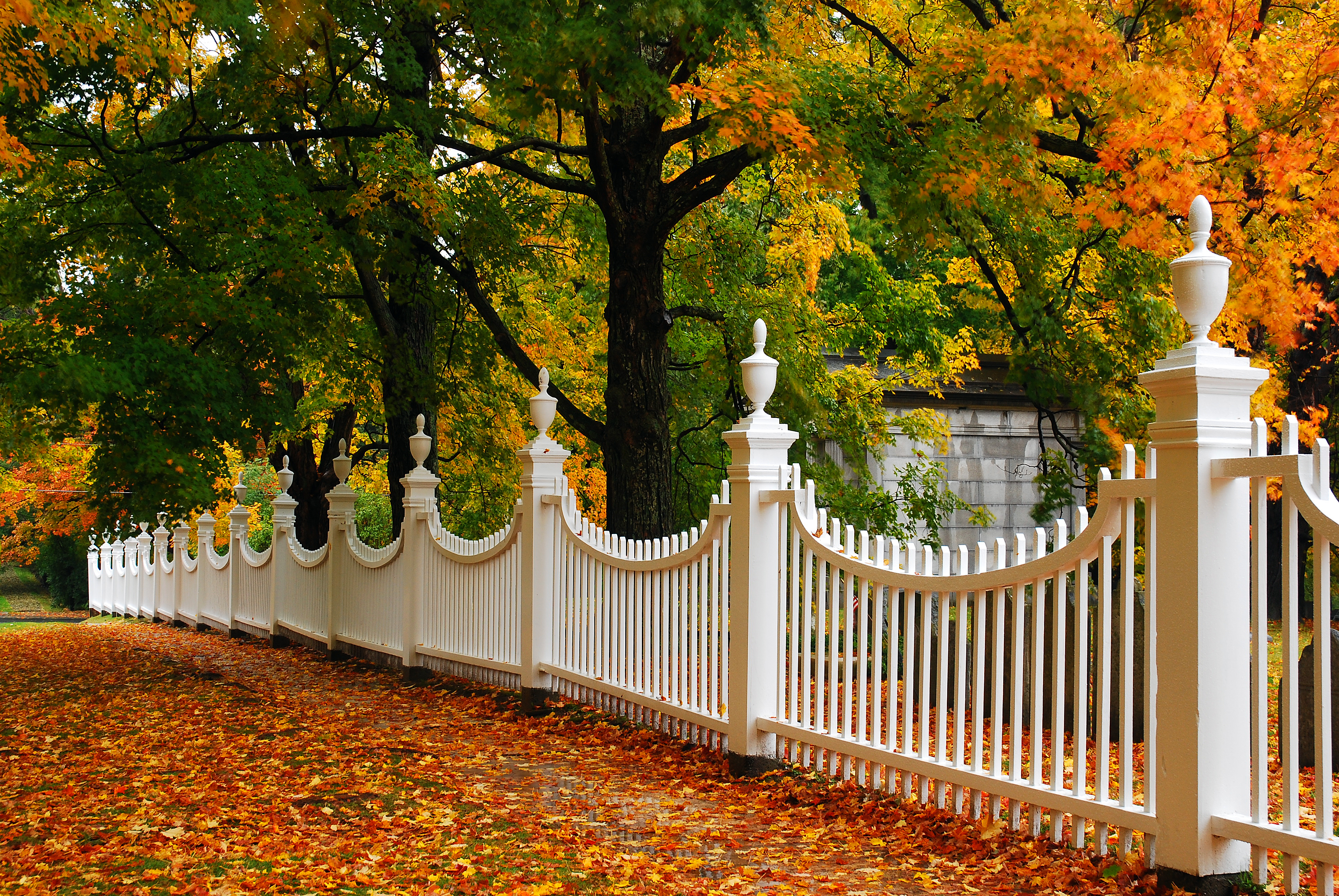 What Is the Standard Size of a Gate in a Fence? | Hunker