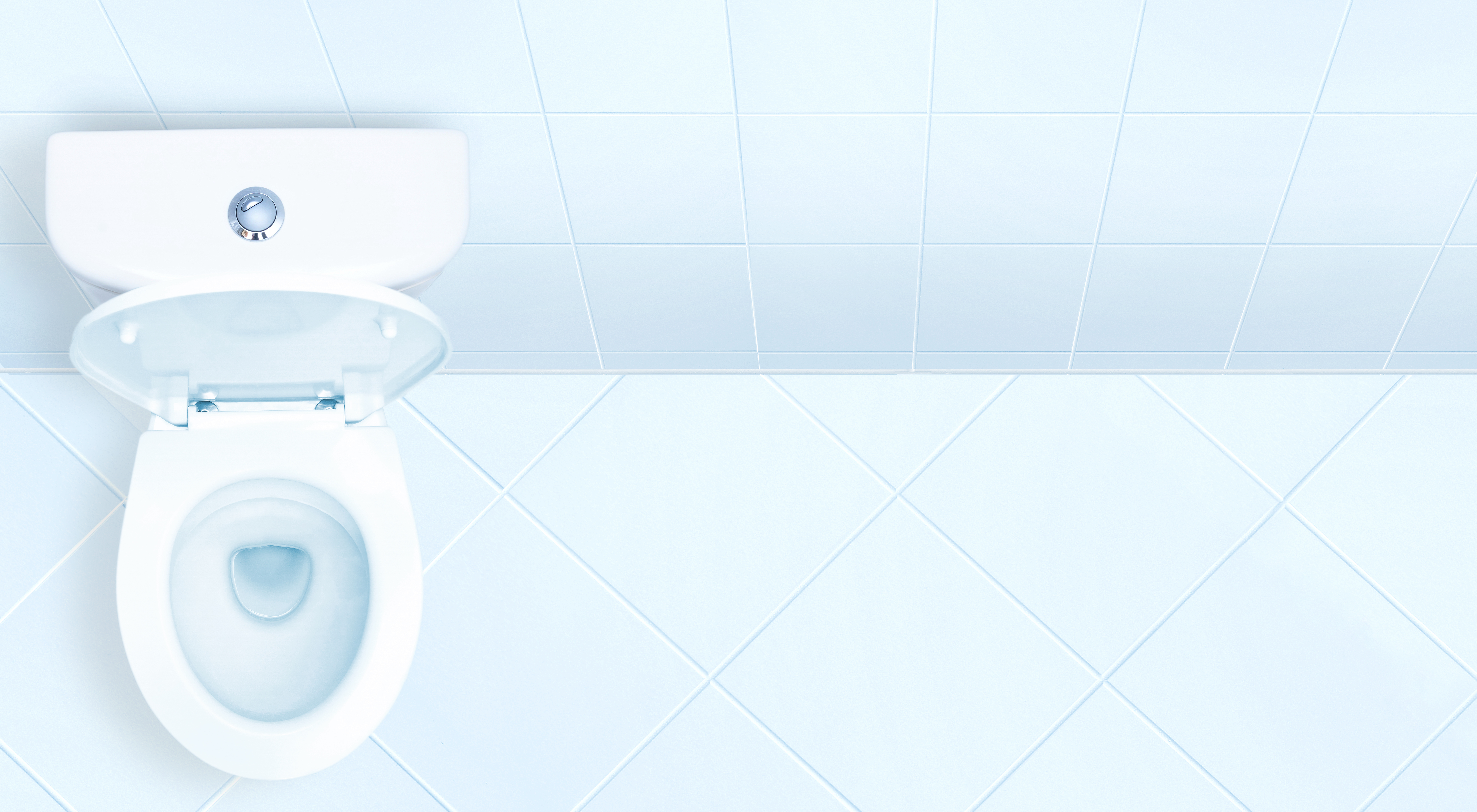 How to Replace Cracked Toilet Tanks | Home Guides | SF Gate