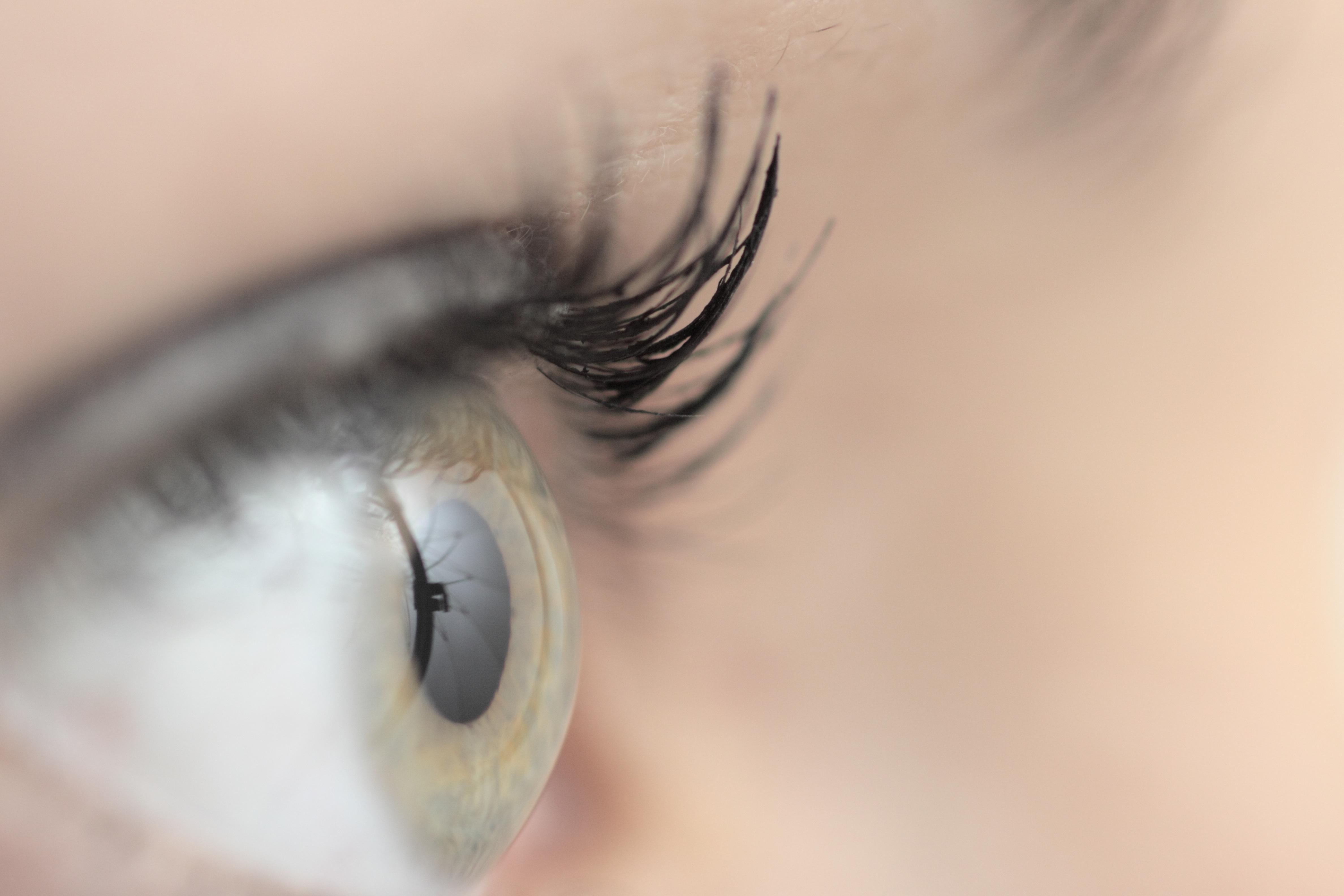 19a572efcce Benefits of Eyelash Tinting | LEAFtv