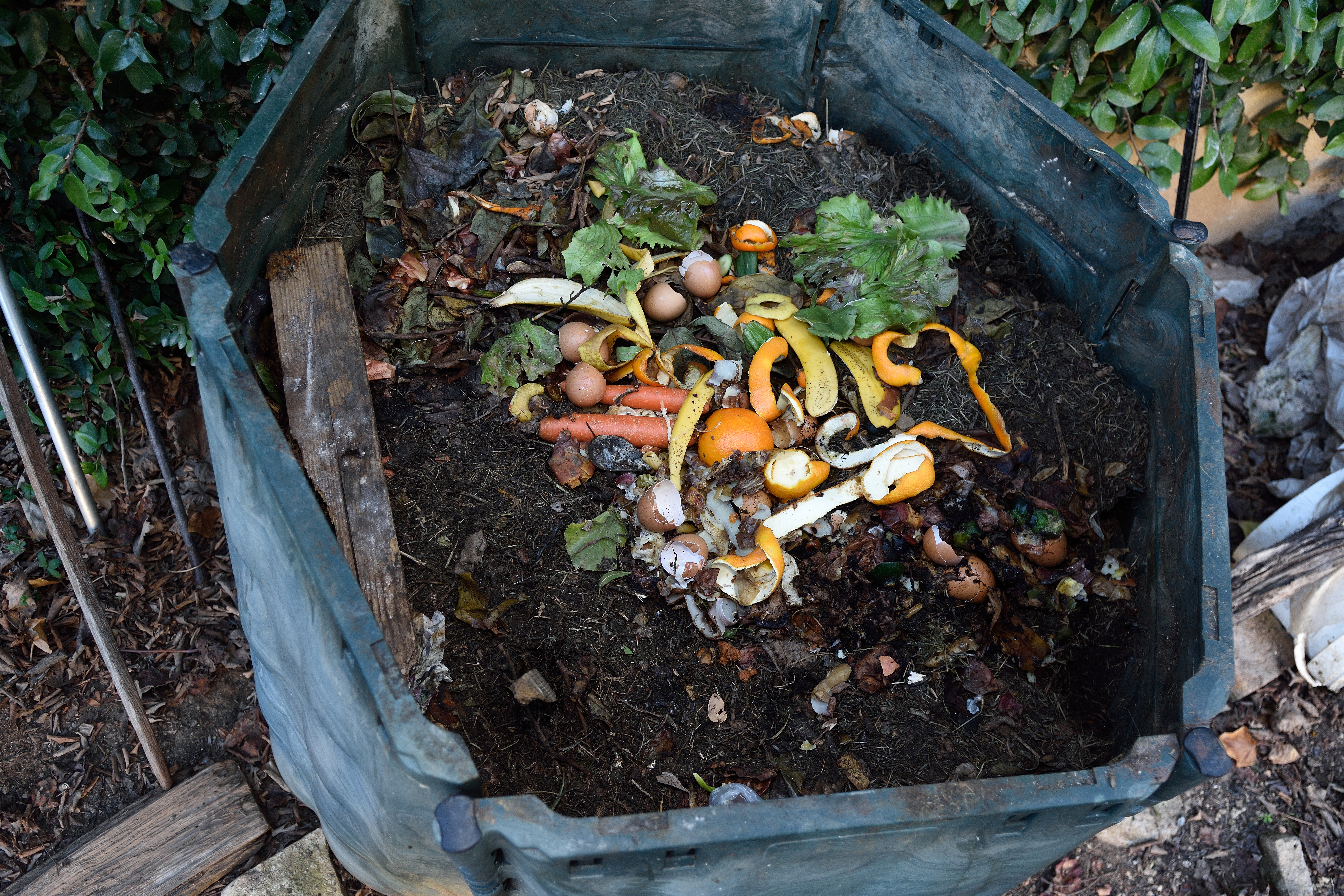 How to Compost Cow Dung | Home Guides | SF Gate