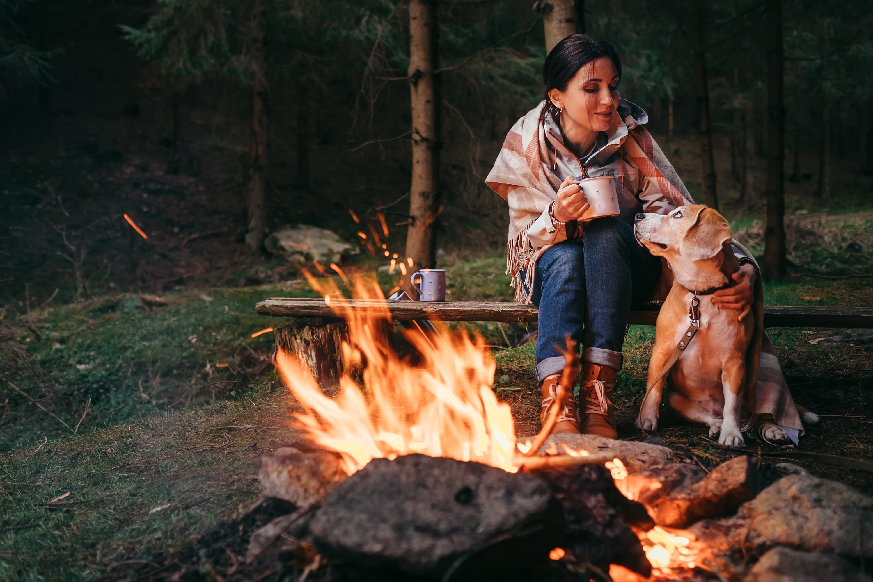 The Best KOA Campgrounds   USA Today